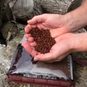 Dynamite Baits Source Pellets